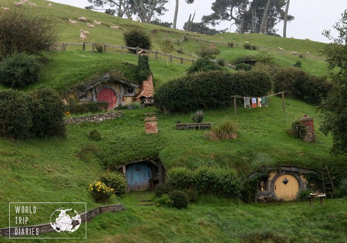 Hobbiton is located in an actual working sheep farm in Matamata, NZ