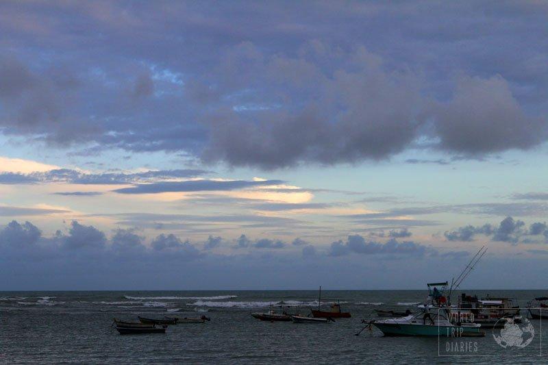 praia do forte bahia brazil