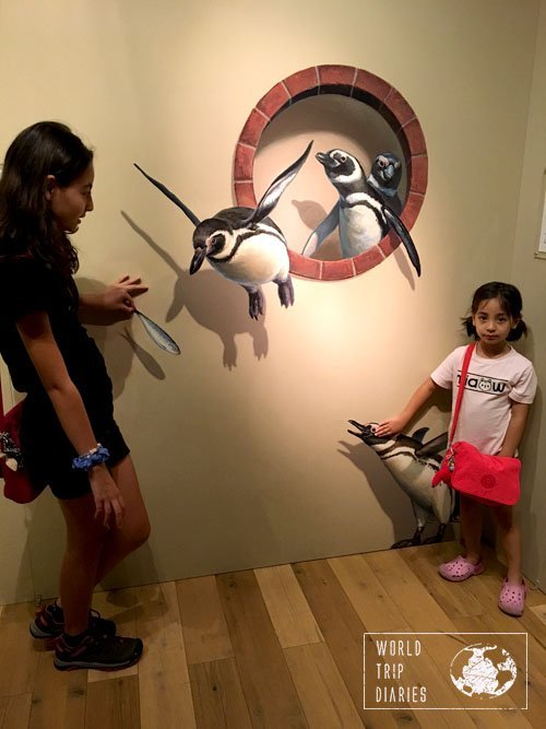 penguins, trick art museum