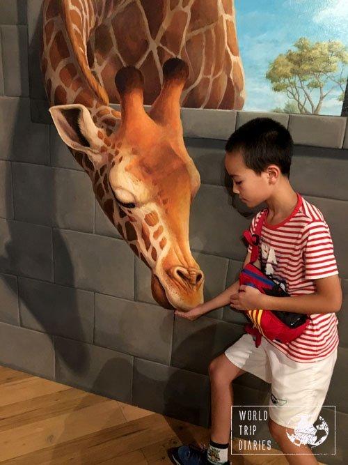 giraffe, trick art museum