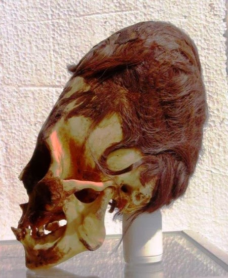 Elongated-Skull-Peru-Red-Hair-450x549