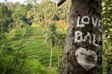 Bali_Ubud_2016_Worldviber_1