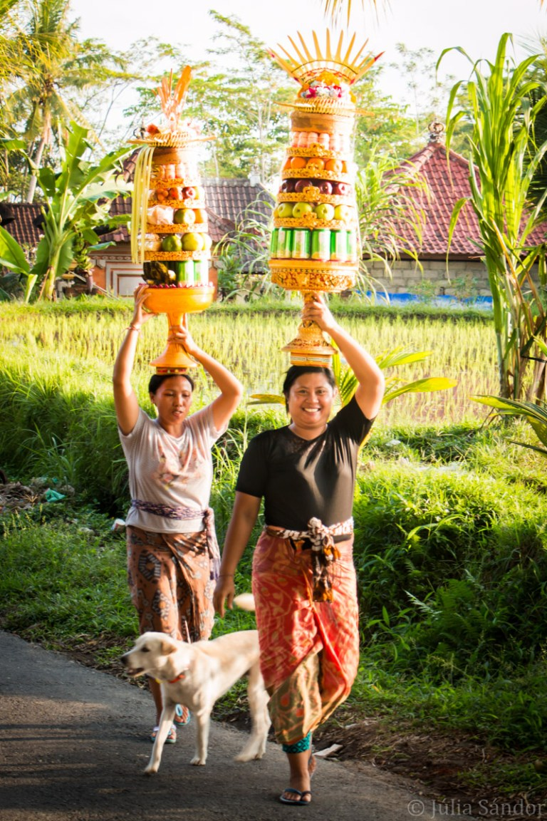 Balinese women carrying offerings