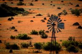 Namaqualand view