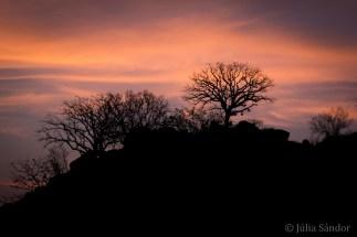 Botswana, sunset in the Tuli Block