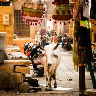 Streetview in Jaisalmer, India, next to the Patwa Haveli