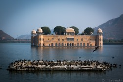 India impressions: Water Palace, Jaipur