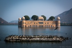India impressions: Water Palace, Jaipur