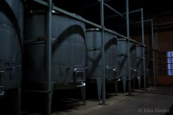 The cellar tour was very interesting, the winery produces 4,5 million bottles each year.