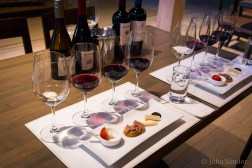 Wine tasting in Chile: Wine tasting with delicious pintxos matching each wine.