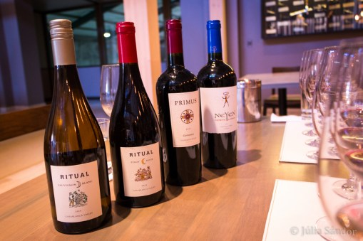 Wine tasting in Chile: Our joint favorite: the Carmenere (okay, the Neyen was also not bad...)