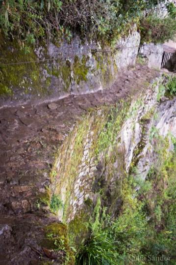 The Inca trail: our path to the Inca Bridge. You should not have vertigo!