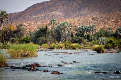 Lush green landscape along the Kunene river bank