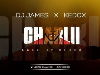 "KJV DJ James Ft. Kedox – ""CharLii"""