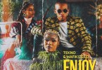 Tekno – Enjoy Remix ft. Mafikizolo