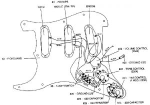 Get Fender Hot Noiseless Wiring Diagram Download