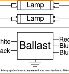 find out here t8 electronic ballast wiring diagram download [ 1483 x 1069 Pixel ]