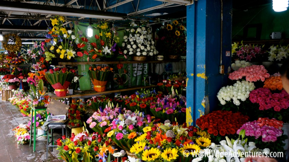 San Angel Flower Market Mexico City