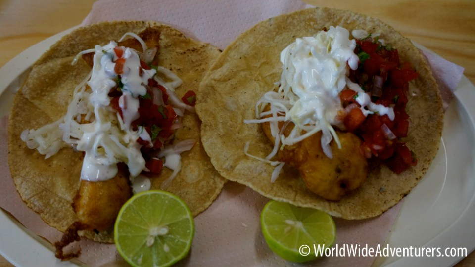 Fish Tacos in Mexico