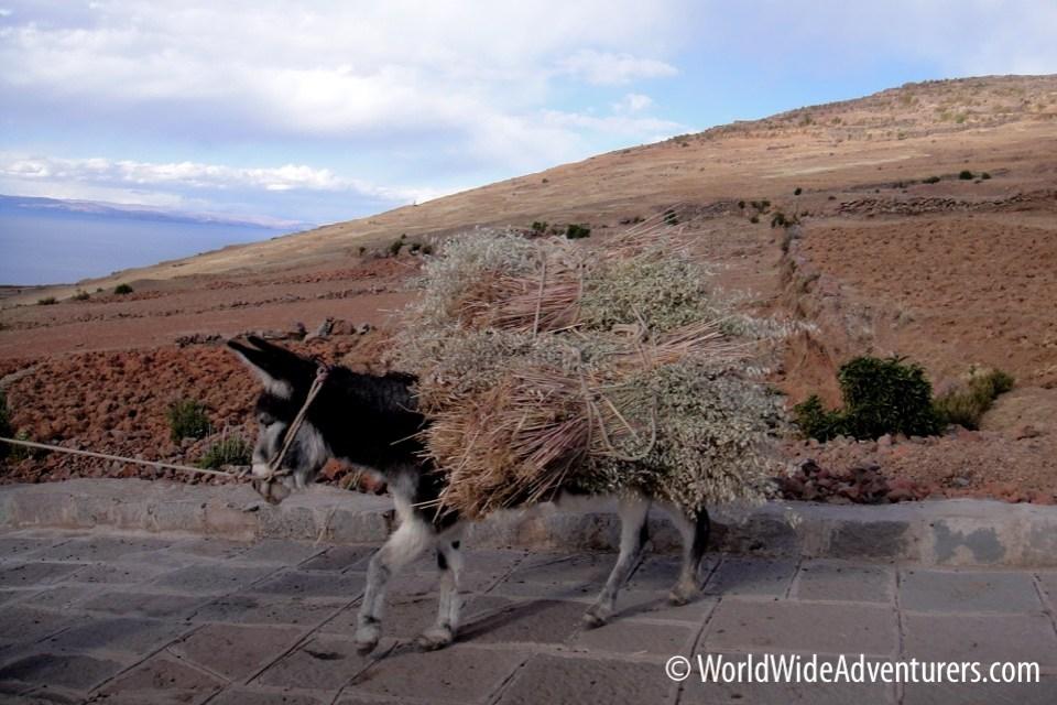 Lake Titicaca Peru 5