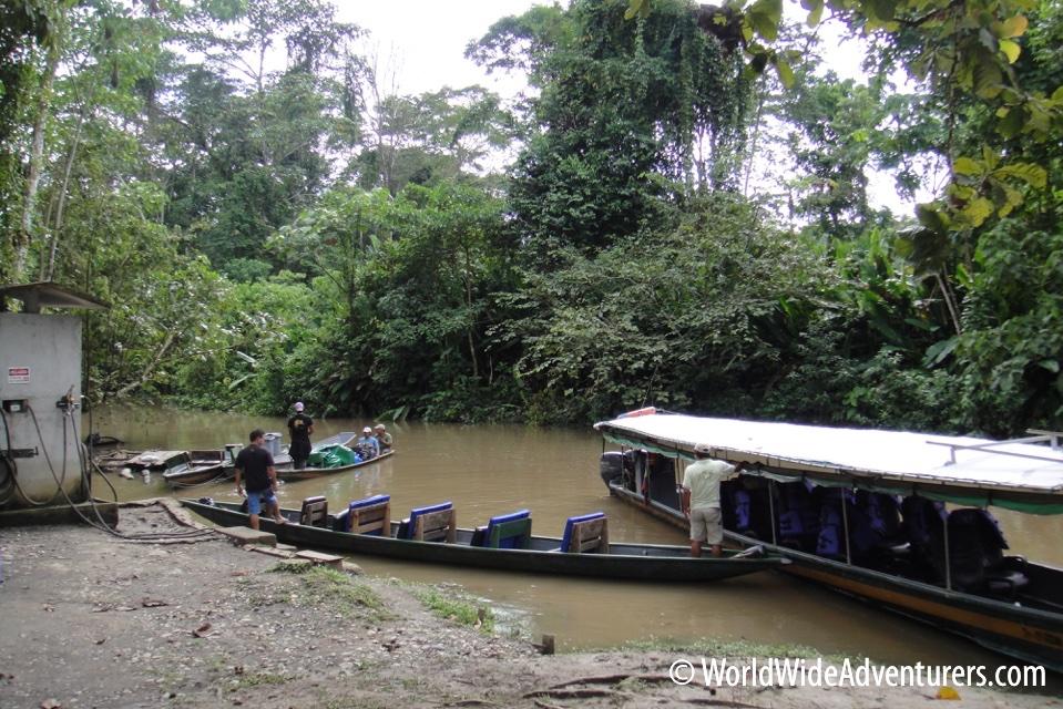 Amazon Napa Ecuador 1