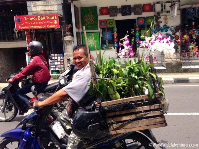 Living in Bali110