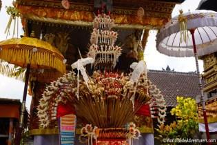 Living in Bali15