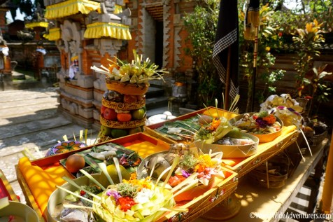 Living in Bali19