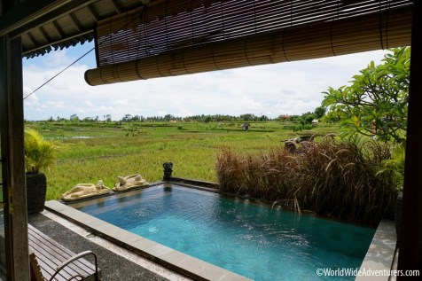 Living in Bali - Finding a Villa to Rent Ubud29