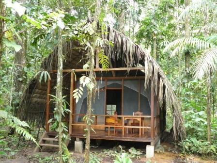 photo of rainforest cabin Huaorani ecolodge