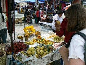 fruit at Otaval market photo