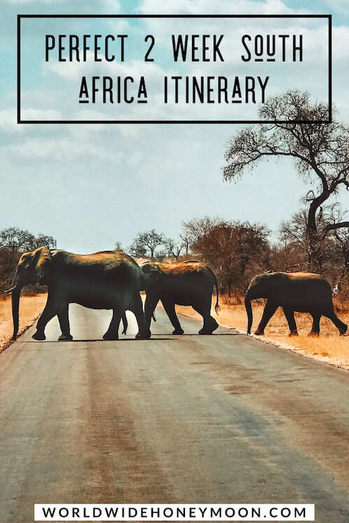 The Perfect Two-Week South African Honeymoon Itinerary (Updated 2019