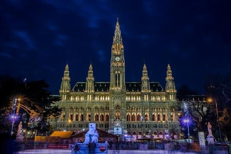 the cathedral overlooking the Christmas market in Vienna