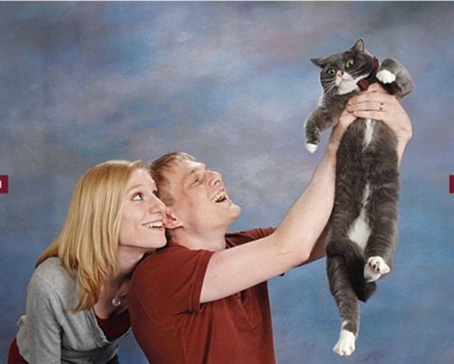 Incredibly Awkward Cat Glamour Shots GALLERY