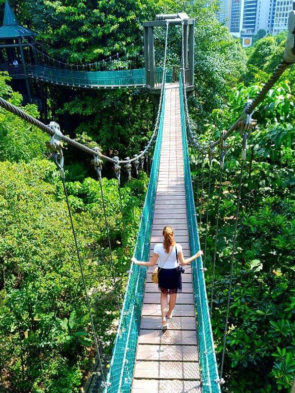 Kuala Lumpur Eco Park Canopy Walk