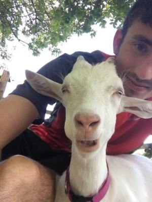 Vegan Joe Benham and French sanctuary goat