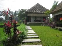 Master Villa