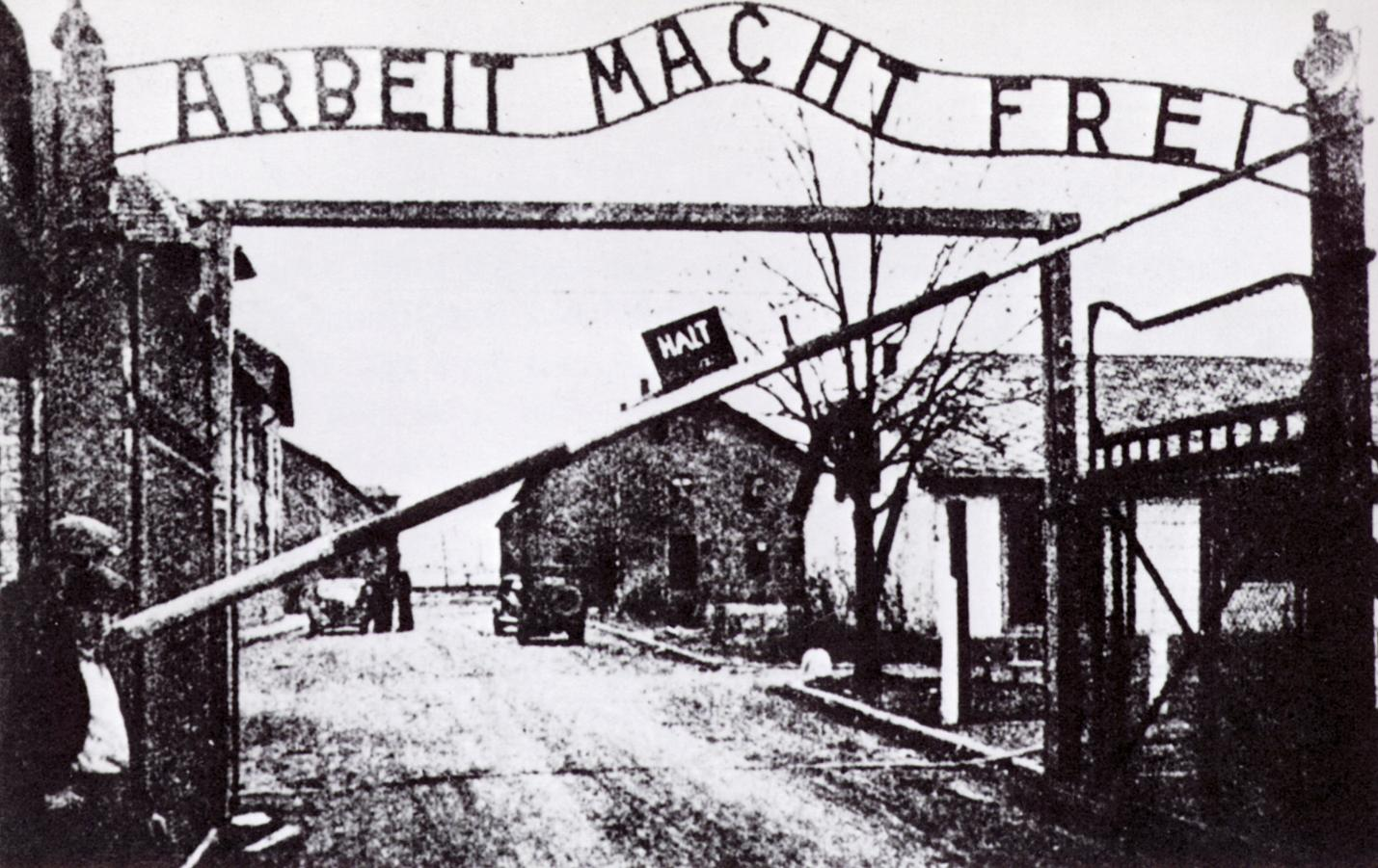 Image result for auschwitz
