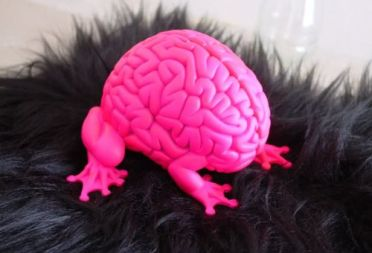 Neon Pink Brain