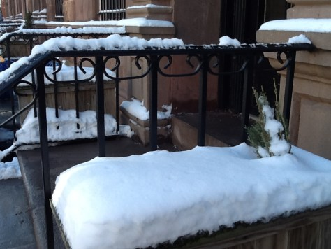 Snow in Front Flower Box