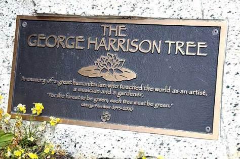 George Harrison Tree Plaque
