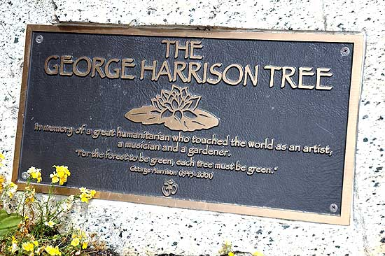 George Harrison Tree Plaque