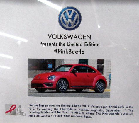 #PinkBeetle Auction
