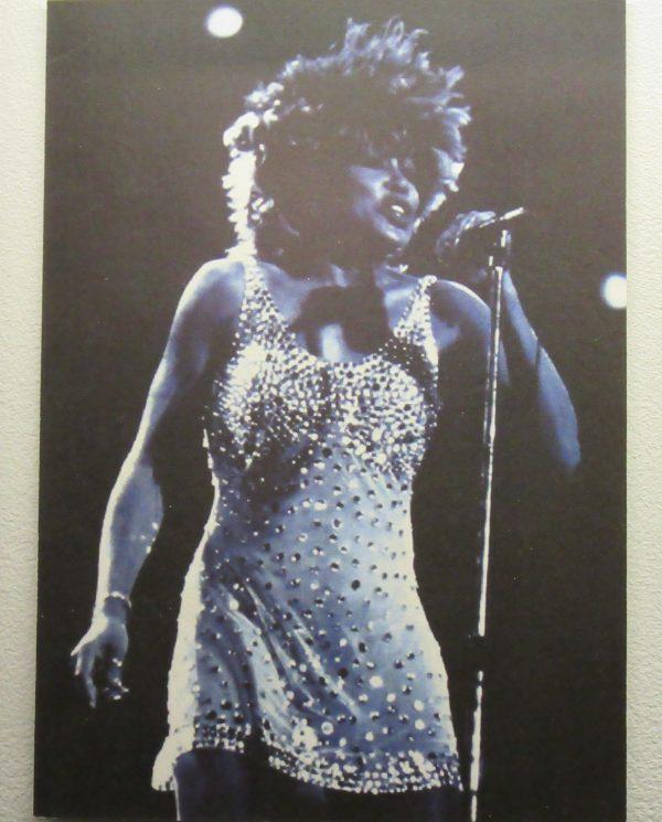 Tina Turner in CD Greene Dress