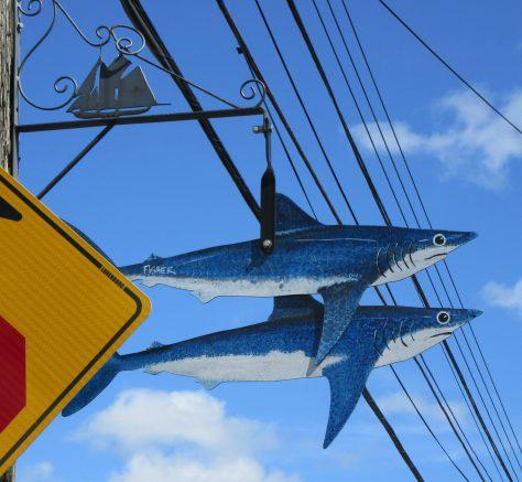 Shark Attack Street Sign Detail