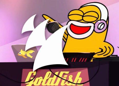 Goldfish Video Still