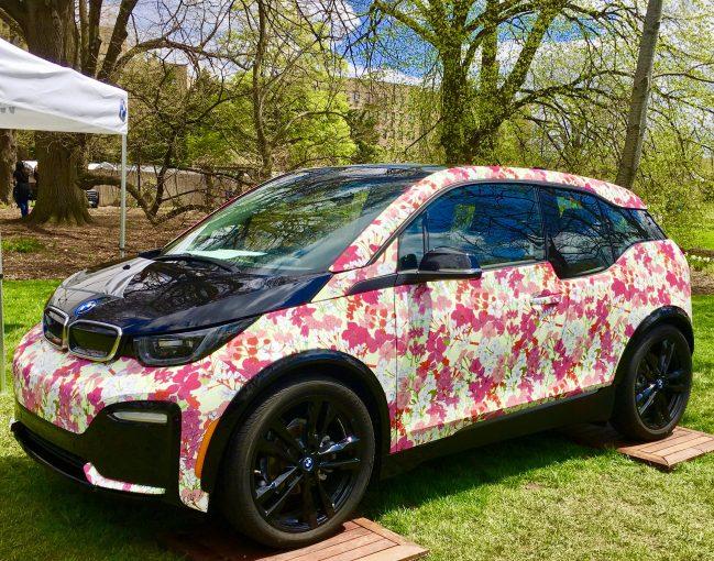Sakura BMW