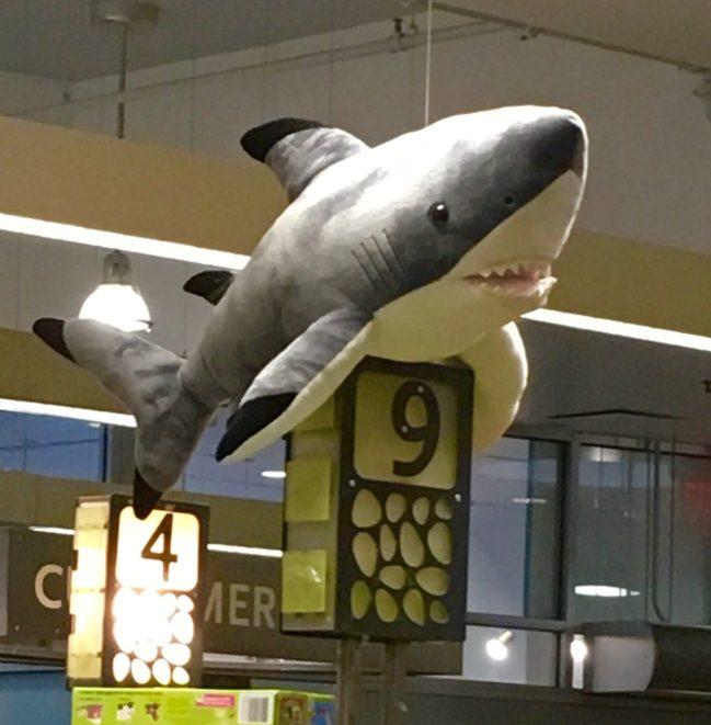 Shark Attack Checkout Aisle