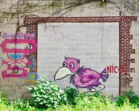 Pink Bird Mural Full