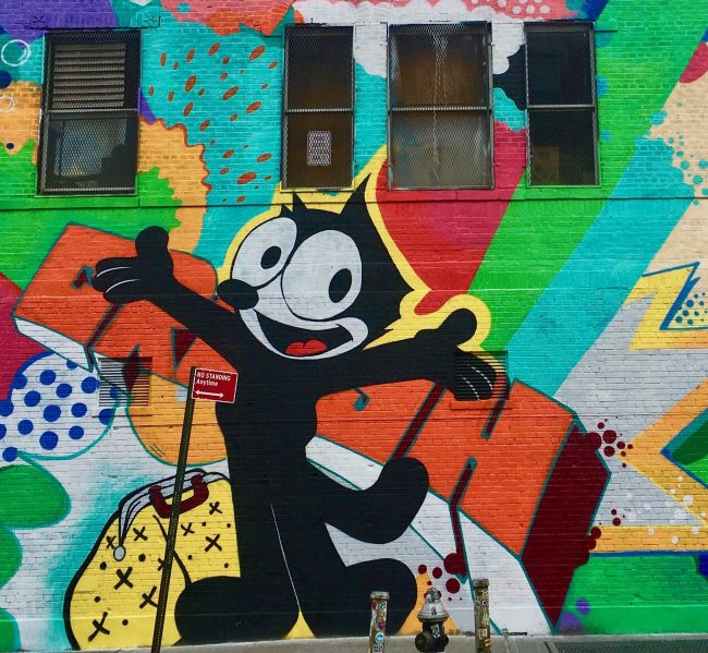 Felix the cat photo by gail worley